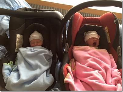 Sebastial left, Julia (yawning) right. Both a few days old.